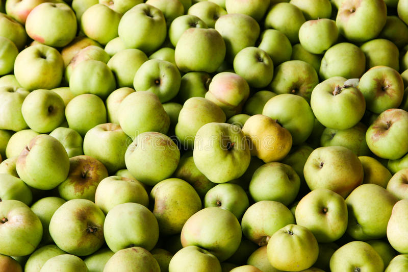 Download 绿色苹果计算机背景 库存图片. 图片 包括有 有机, 自然, 生气勃勃, 健康, 模式, 绿色, 纹理, 应用 - 30338907