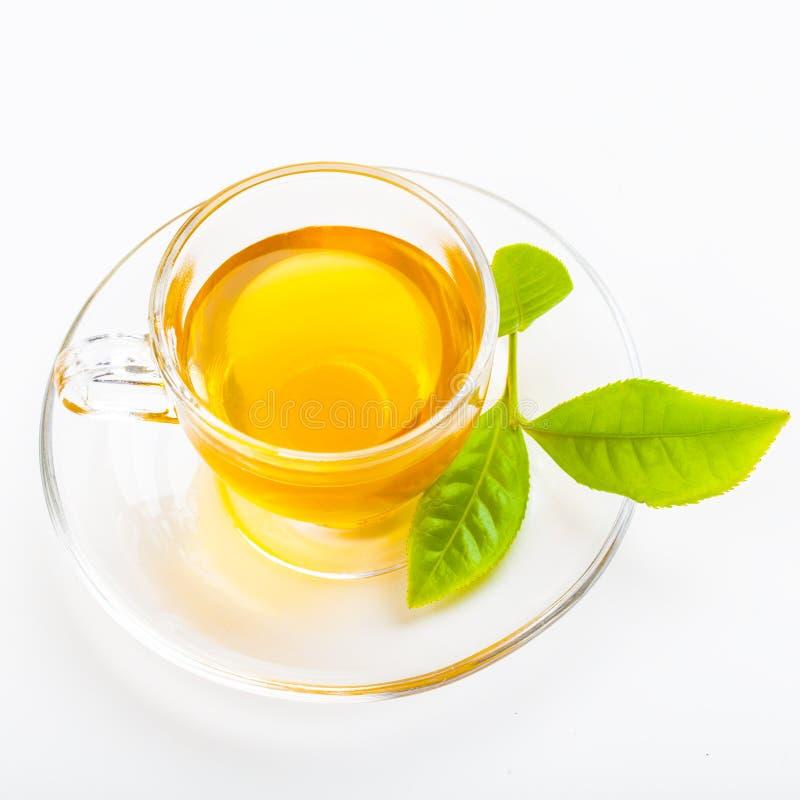 绿色茶叶和玻璃杯子红茶 库存照片