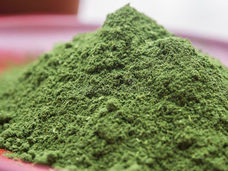 绿色茶粉末 库存图片