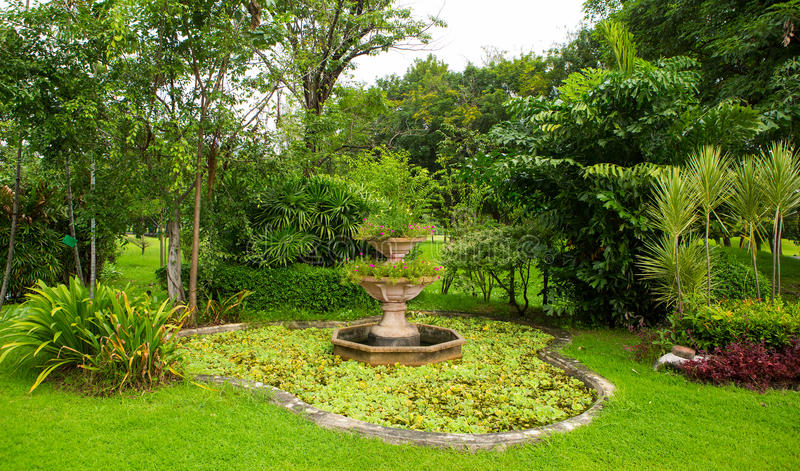 绿色草坪和树公园 免版税库存图片