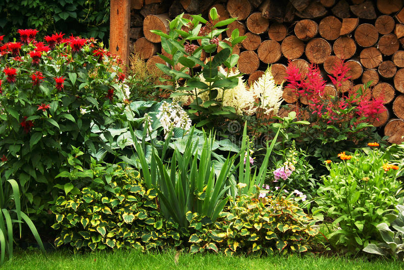 绿色草坪在一个五颜六色的环境美化的规则式园林里 美丽的加尔德角的墙壁 免版税库存图片