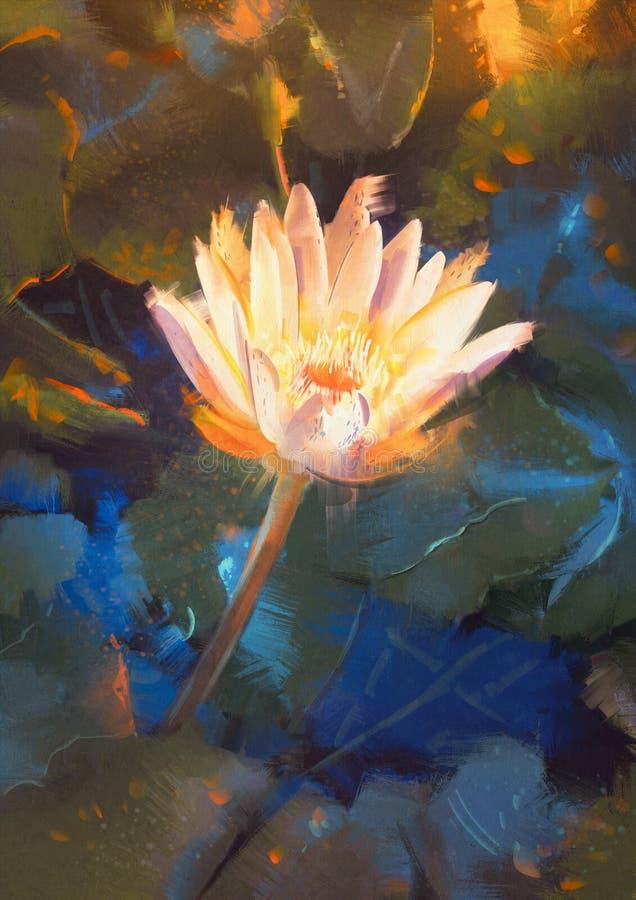 黄色莲花开花,选拔waterlily开花在池塘的花 库存例证