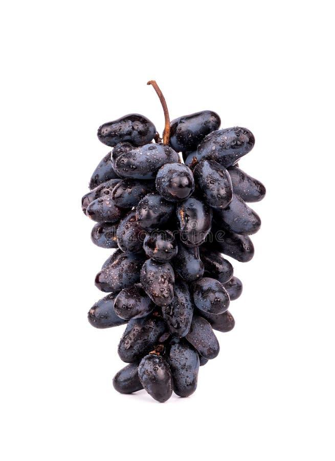 黑色葡萄 图库摄影