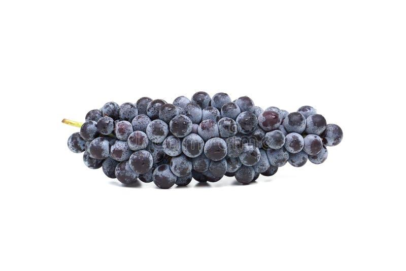 黑色葡萄 免版税库存照片