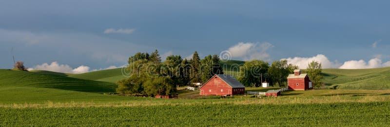 绿色调遣红色谷仓,并且蓝天,是全部您需要 免版税库存照片