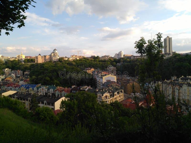 绿色豪华的植被在基辅 免版税库存照片