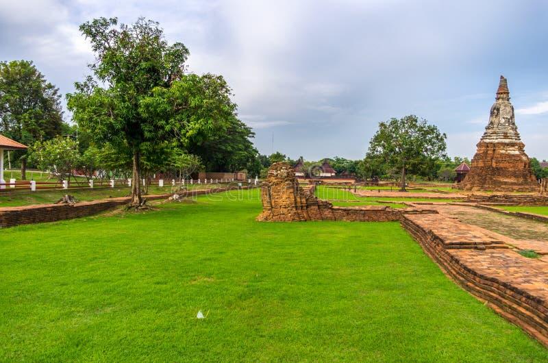 绿色豪华的草在Wat Chaiwatthanaram在市阿尤特拉利夫雷斯 库存照片