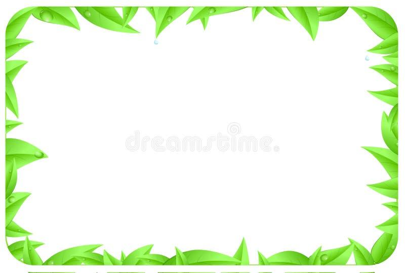 绿色边界由有空间文本的叶子制成 库存照片
