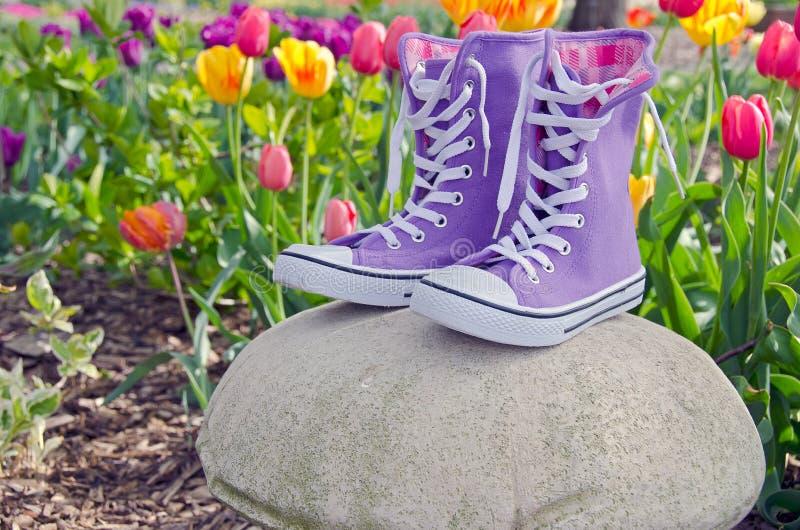 紫色运动鞋在郁金香庭院里 免版税图库摄影