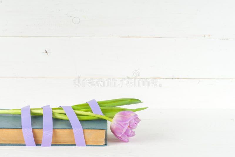紫色郁金香和书 库存图片