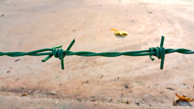 绿色铁丝网 免版税库存图片