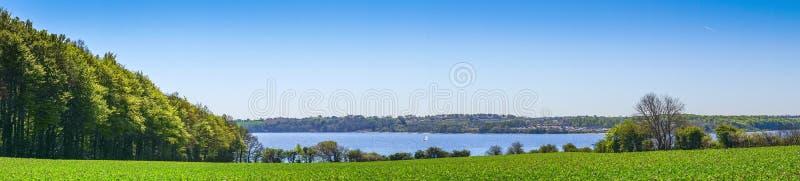 绿色领域和树由海 免版税库存照片