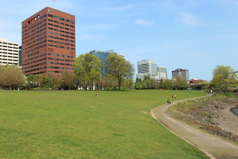 绿色领域和高楼 免版税库存照片