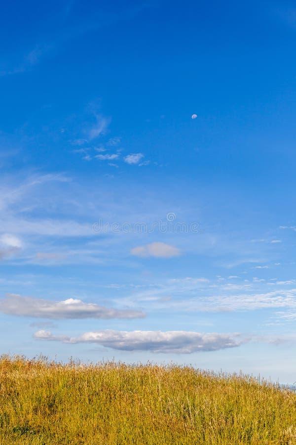 绿色领域的风景本质在顶面小山的与美丽的蓝色 库存照片
