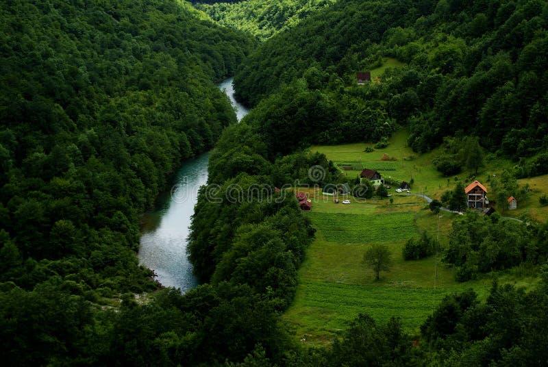 绿色风景在黑山 库存图片