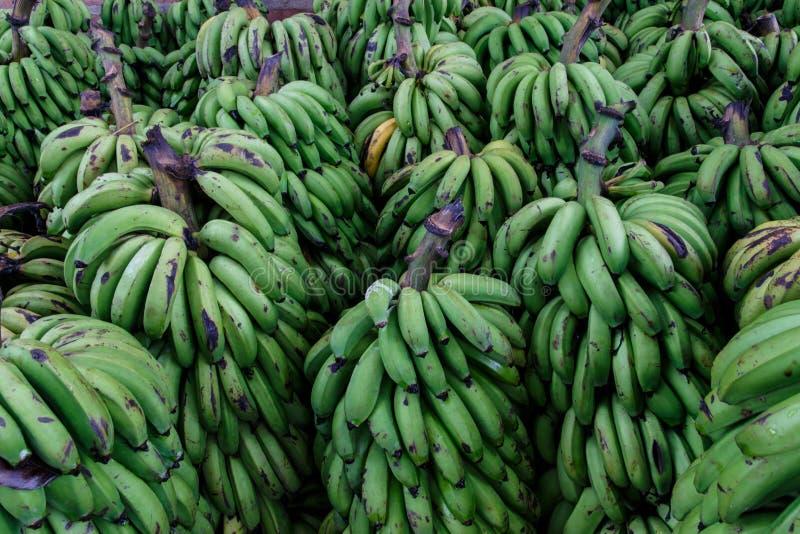 绿色香蕉作为背景 库存照片