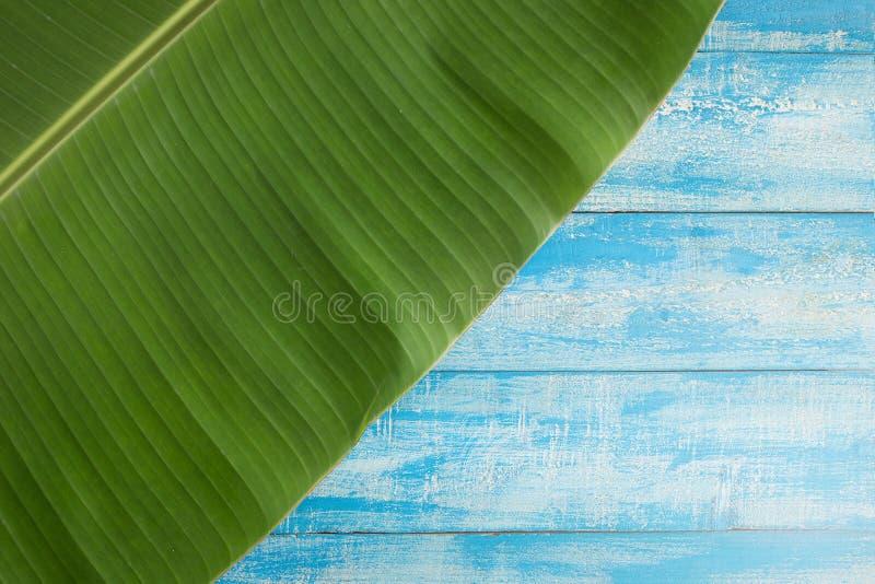 绿色香蕉在蓝色土气背景离开 免版税库存照片