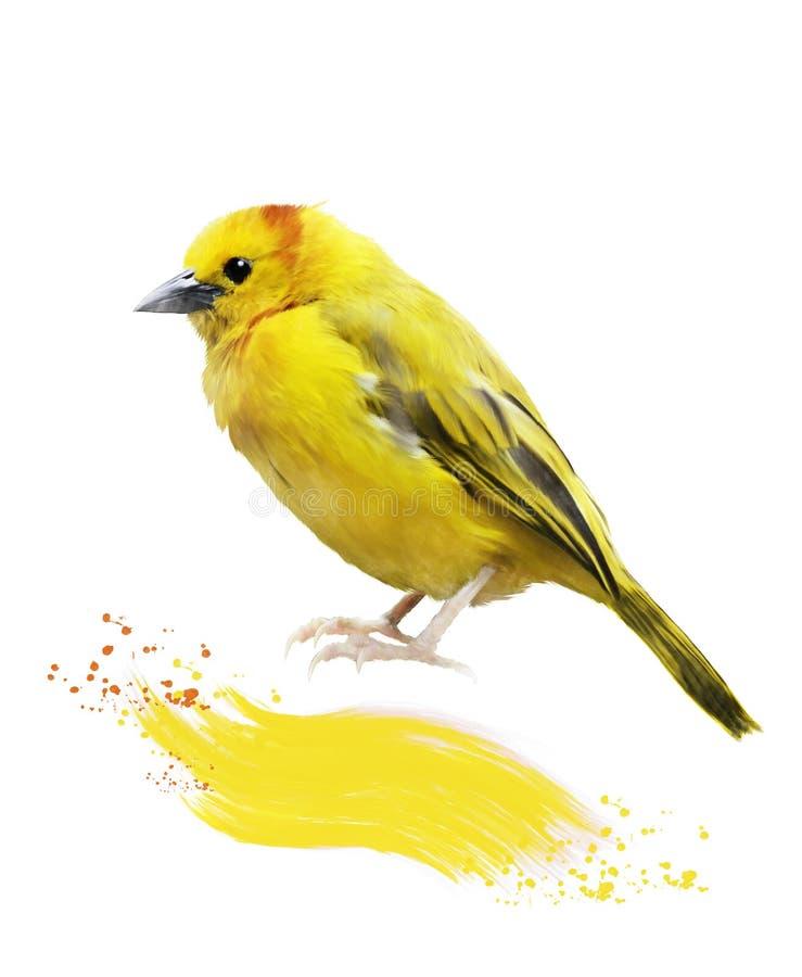 黄色鸟的水彩图象 库存例证