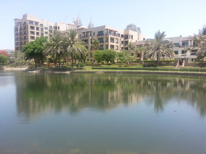 绿色,迪拜 免版税图库摄影