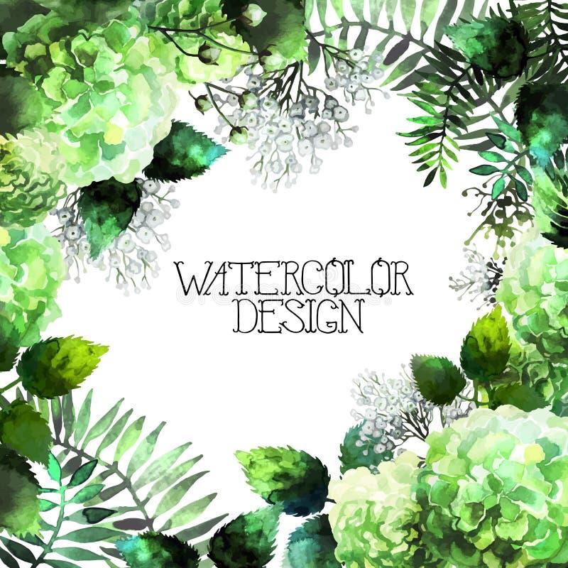 绿色水彩八仙花属设计 库存例证