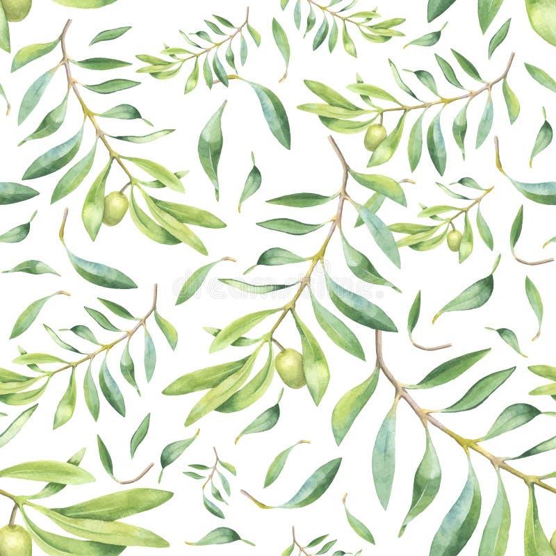 绿色水彩橄榄树枝 皇族释放例证