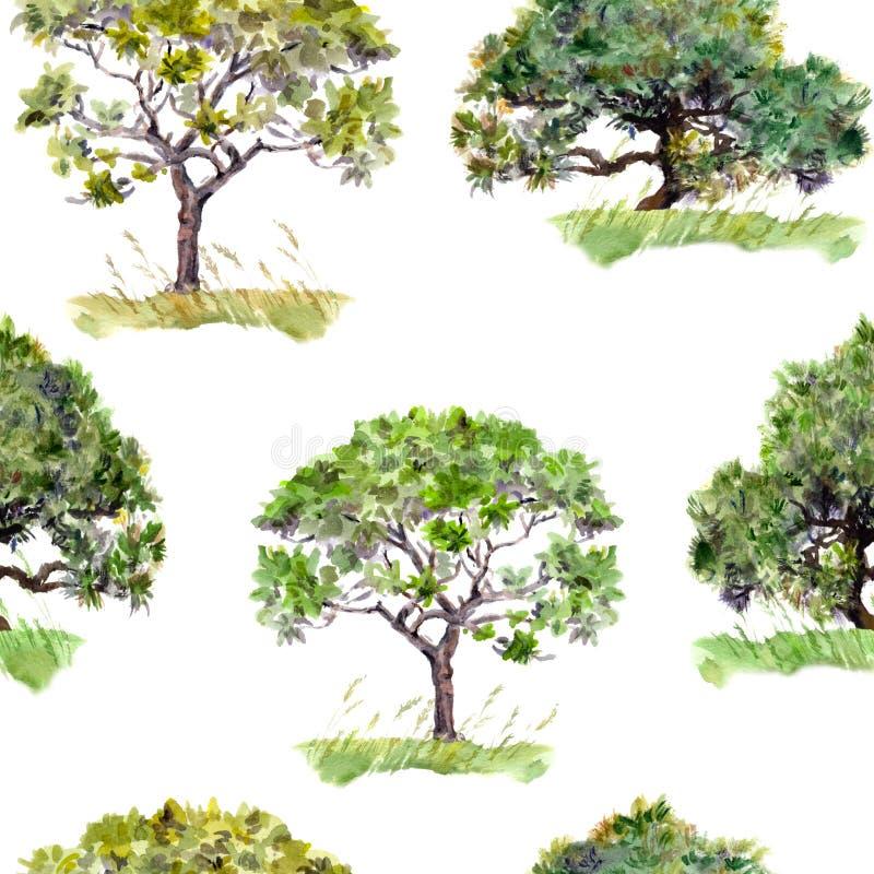 绿色结构树 公园,森林样式 无缝的背景 水彩 向量例证