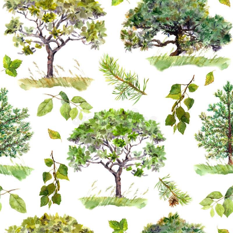 绿色结构树 公园,森林样式 背景重复 水彩 向量例证