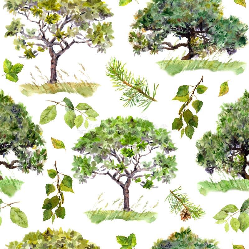 绿色结构树 公园,森林背景 叶子仿造无缝 水彩 库存例证