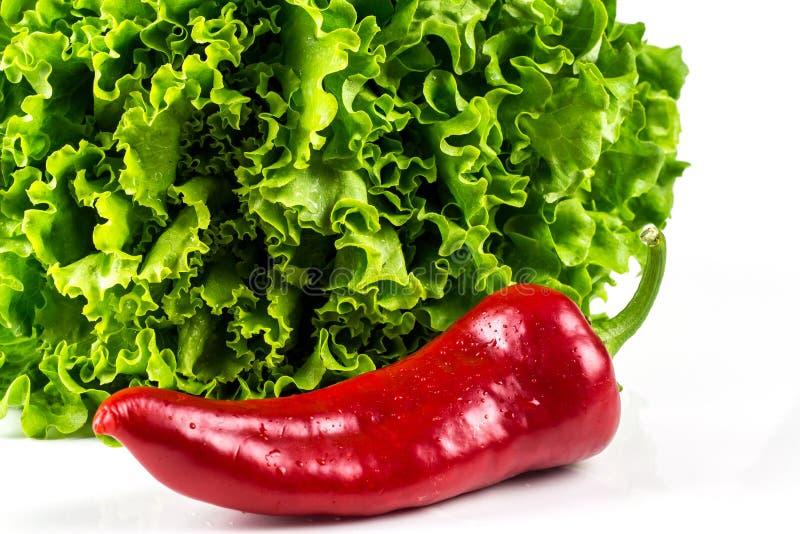 绿色莴苣和甜红色辣椒粉 免版税库存图片