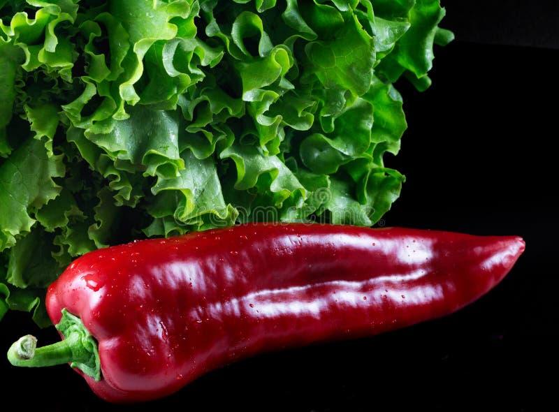 绿色莴苣和红色甜辣椒粉 免版税库存照片