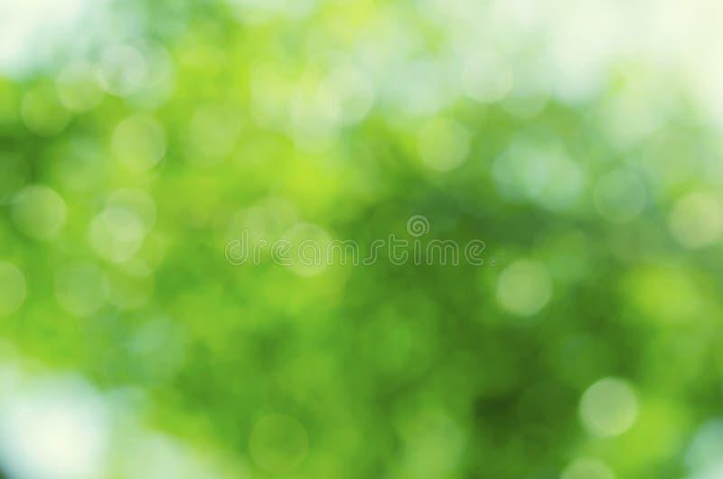 绿色bokeh摘要背景 库存图片