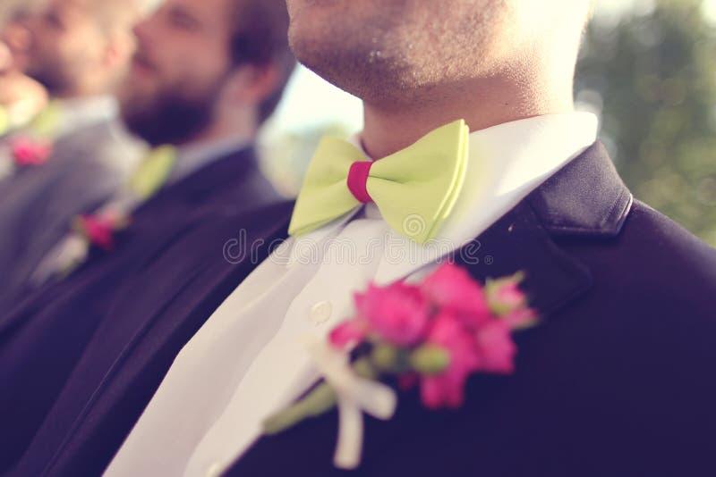 绿色bowtie 免版税图库摄影