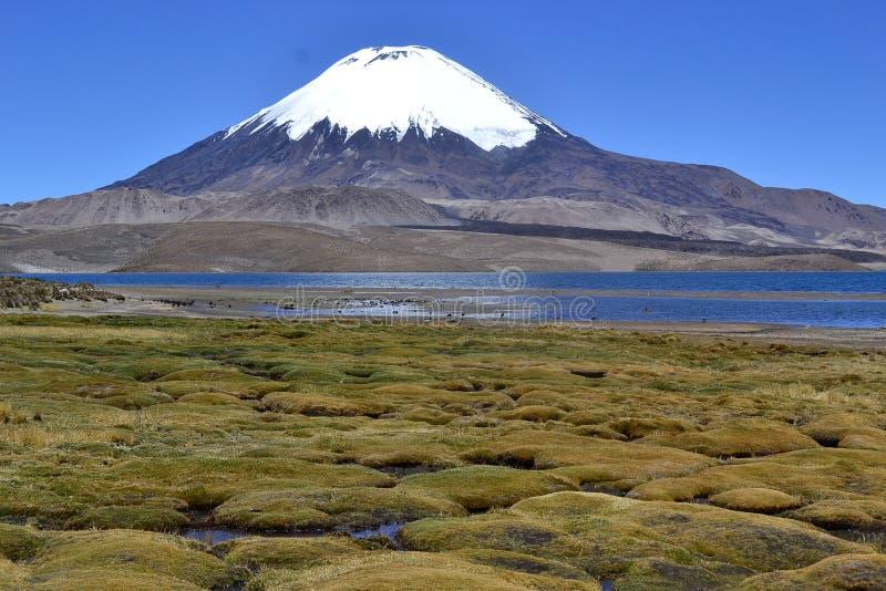 水色Caliente,火山Sajma,玻利维亚 免版税库存照片