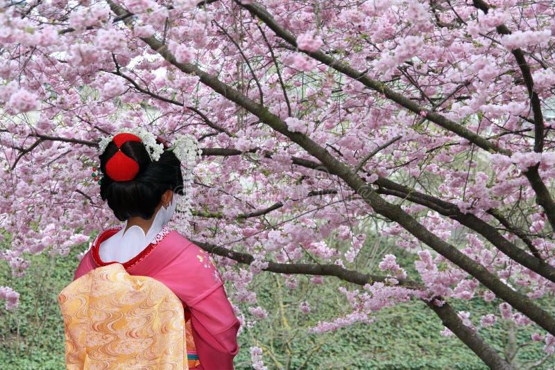 艺妓日语 免版税图库摄影
