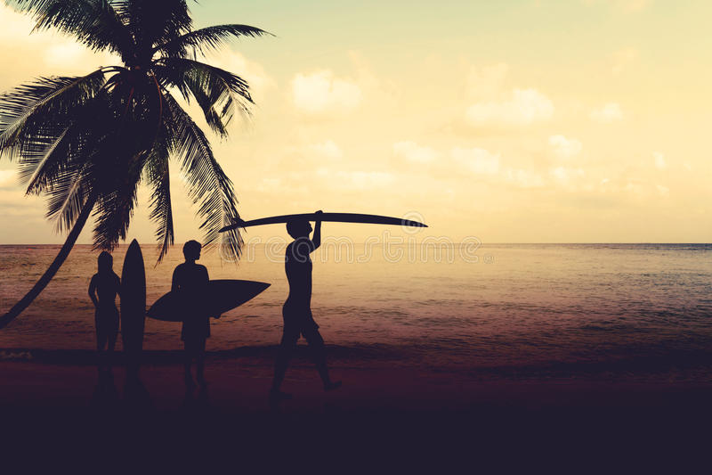 艺术剪影冲浪者照片样式海滩的在日落 库存图片
