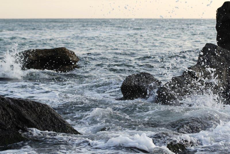 艺术品设计自然海运纹理通知 库存图片