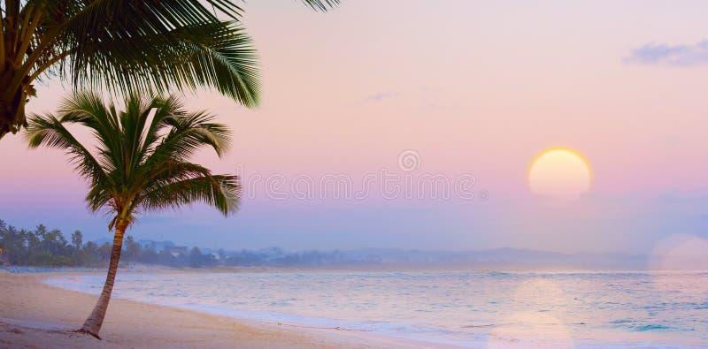 艺术夏天Drims;在热带海滩的美好的日落;summ 库存照片