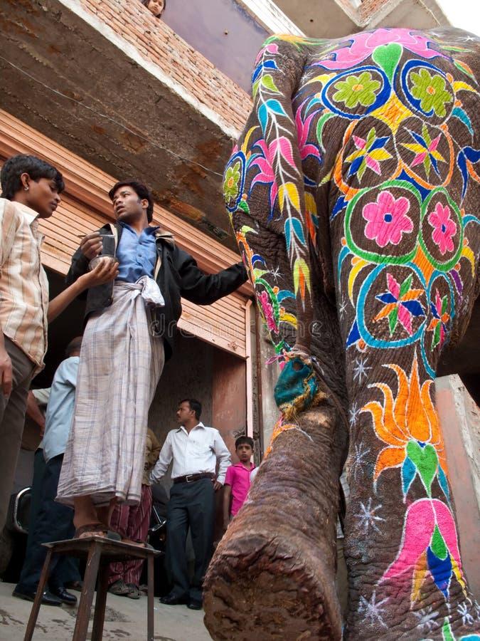 艺术家明亮的颜色大象油漆 免版税库存图片
