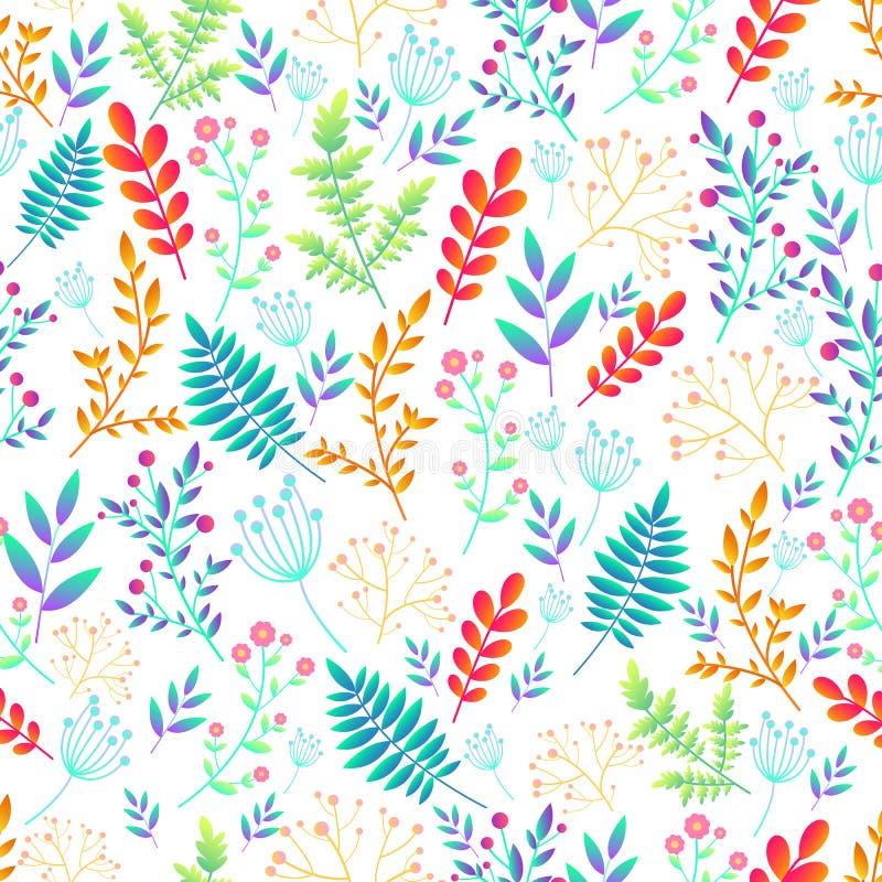 艺术性的五颜六色的领域野花无缝的花卉样式 装饰花和植物,在白色的明亮的梯度颜色 皇族释放例证