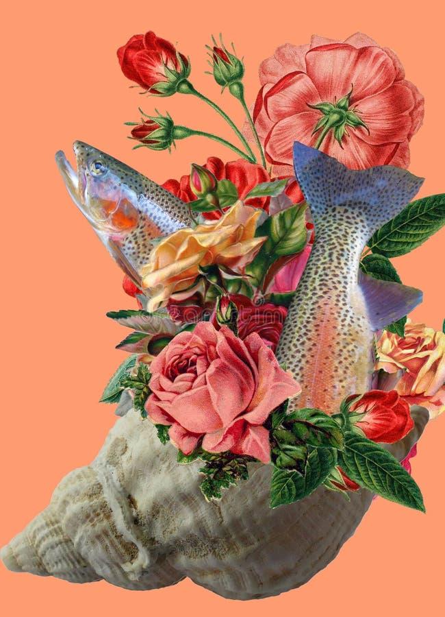 艺术拼贴画,玫瑰花束在贝壳的 库存照片