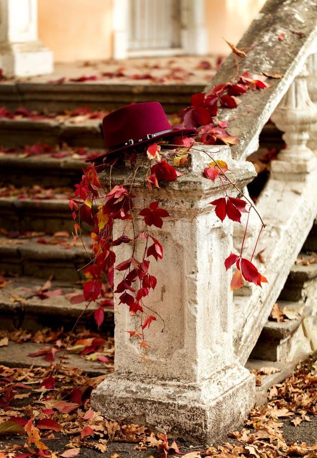 艺术秋天背景数字式秋天叶子 红色和黄色在被毁坏的老sto离开 库存照片