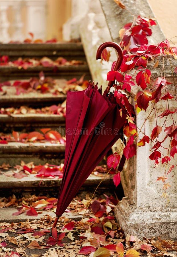 艺术秋天背景数字式秋天叶子 红色和黄色在被毁坏的老sto离开 免版税库存照片