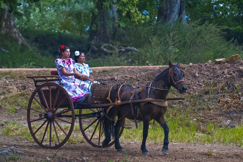 节日印第安人混血儿 免版税图库摄影