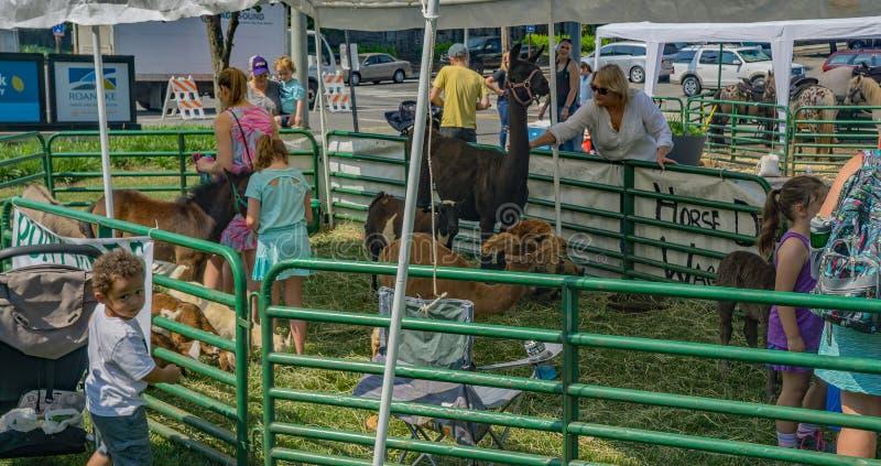 节日在公园儿童动物园里 免版税图库摄影