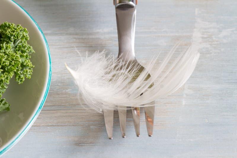 节食光作为与叉子和绿色健康食物的一个羽毛独特的抽象概念 免版税库存照片