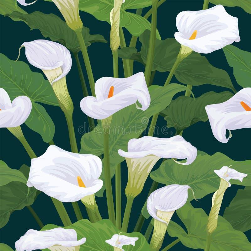 水芋百合的无缝的样式开花与在深绿背景的叶子 向量例证