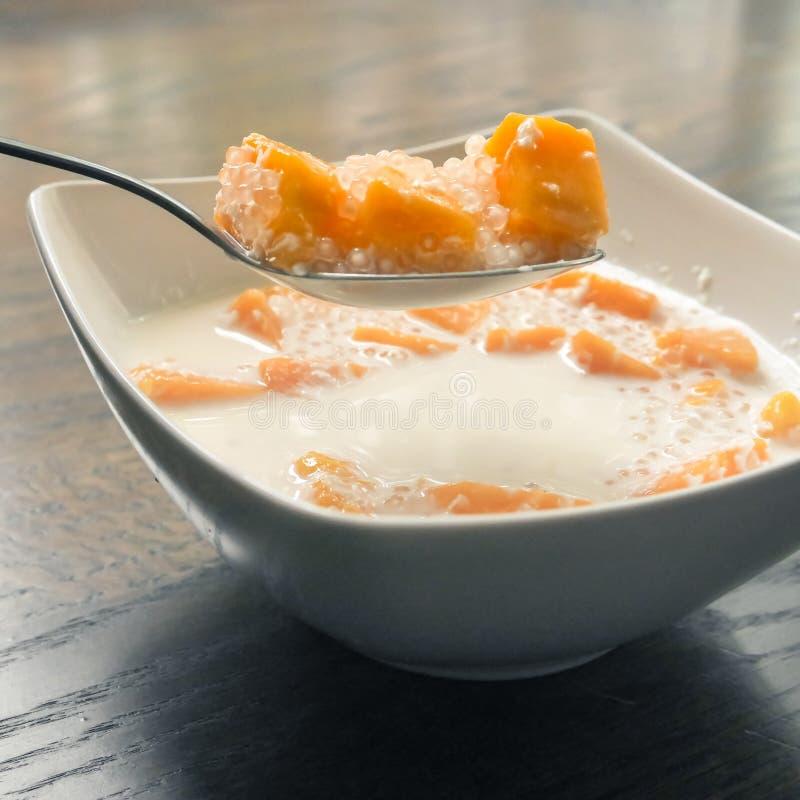 芒果和西米露在椰奶 免版税库存图片