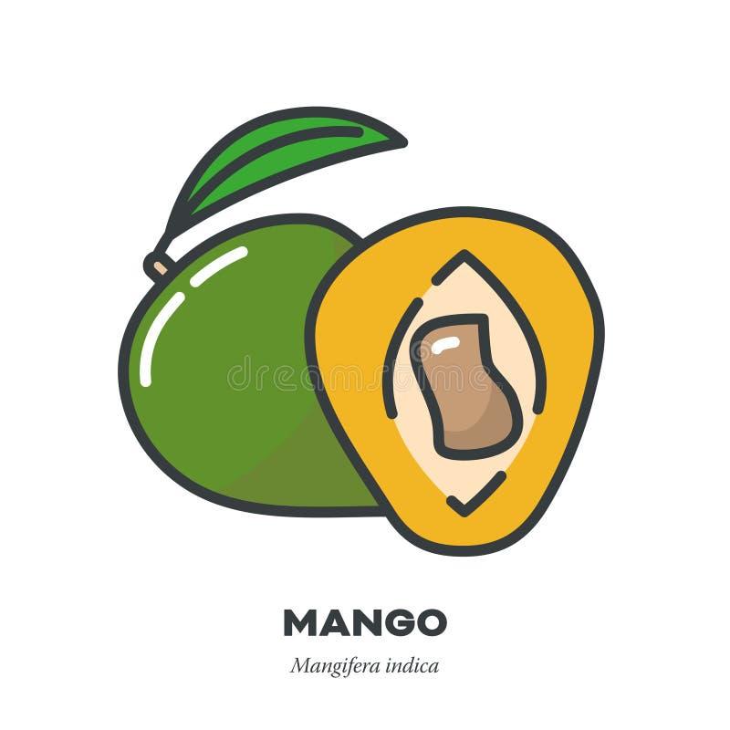 芒果果子象,填装了概述样式传染媒介 皇族释放例证