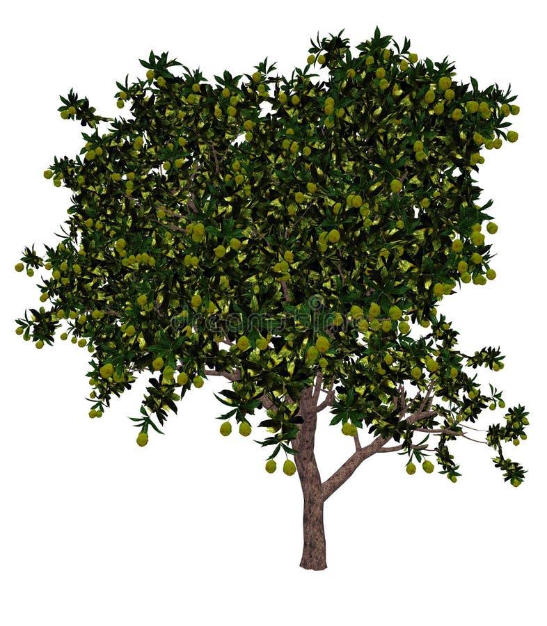 芒果树- 3D回报 皇族释放例证
