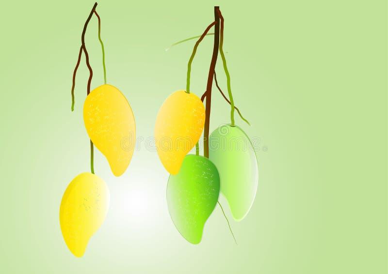 芒果背景,绿色芒果和黄色垂悬导航例证 库存例证